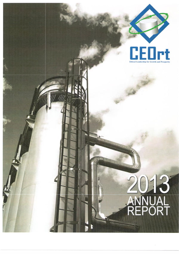 CEO Roundtable 2013 Annual Report