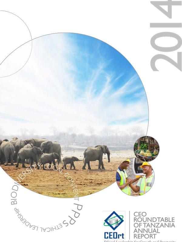 CEO Roundtable 2014 Annual Report