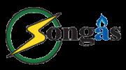 songas-logo
